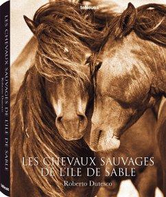 Les chevaux sauvages de l'île de Sable