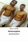 Hemmungslos (eBook, ePUB)