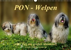 PON - Welpen, jeder Tag ein großes Abenteuer / Geburtstagskalender (Wandkalender immerwährend DIN A3 quer)