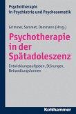 Psychotherapie in der Spätadoleszenz (eBook, PDF)