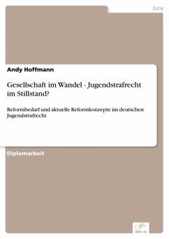 Gesellschaft im Wandel - Jugendstrafrecht im Stillstand? (eBook, PDF) - Hoffmann, Andy