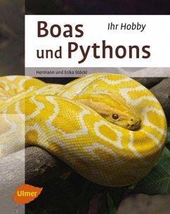 Boas und Pythons - Stöckl, Erika; Stöckl, Hermann