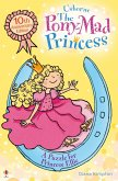 A Puzzle for Princess Ellie (eBook, ePUB)