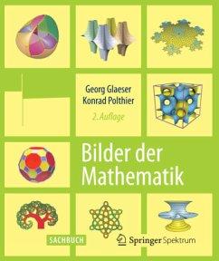 Bilder der Mathematik - Glaeser, Georg; Polthier, Konrad