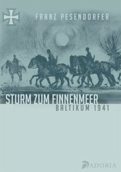 Sturm zum Finnenmeer - Pesendorfer, Franz