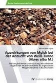 Auswirkungen von Mulch bei der Anzucht von Weiß-Tanne (Abies alba M.)