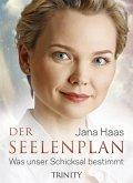 Der Seelenplan (eBook, ePUB)