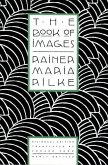 The Book of Images (eBook, ePUB)