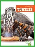 Turtles (eBook, PDF)