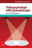 Tiefenpsychologie trifft Systemtherapie (eBook, PDF)
