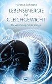 Lebensenergie im Gleichgewicht (eBook, ePUB)