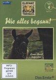 Elefant, Tiger & Co. - Staffel Null - Wie alles begann. Tl.4, 1 DVD