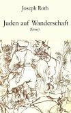 Juden auf Wanderschaft (eBook, ePUB)