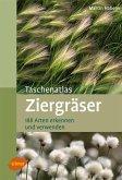 Taschenatlas Ziergräser (eBook, ePUB)
