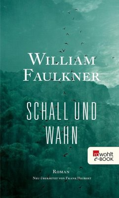 Schall und Wahn (eBook, ePUB) - Faulkner, William