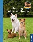 Haltung mehrerer Hunde (eBook, ePUB)