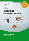 Die Spinne. Grundschule, Sachunterricht, Klasse 2-3