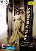 Anna Netrebko - Live From the Salzburg Festival (4 Discs)