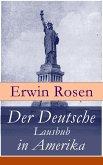Der Deutsche Lausbub in Amerika (eBook, ePUB)