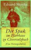 Der Spuk im Pfarrhaus zu Cleversulzbach (Eine Horrorgeschichte) (eBook, ePUB)