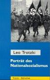 Porträt des Nationalsozialismus (eBook, ePUB)