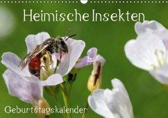 Heimische Insekten / Geburtstagskalender (Wandkalender immerwährend DIN A3 quer) - Hahnefeld, Silvia