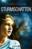 Sturmschatten (eBook, ePUB)