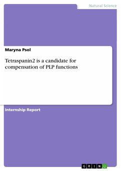 Tetraspanin2 is a candidate for compensation of PLP functions