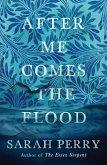 After Me Comes the Flood (eBook, ePUB)