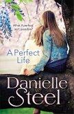 A Perfect Life (eBook, ePUB)