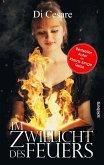 Im Zwielicht des Feuers (eBook, ePUB)
