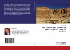 The Expeditions Scenes on New Kingdom Temples