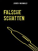 Falsche Schatten (eBook, ePUB)