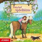 Lotte und Goldstück / Ponyhof Apfelblüte Bd.3 (MP3-Download)