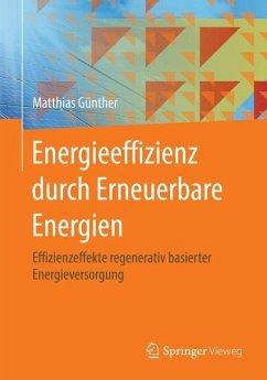 Energieeffizienz durch Erneuerbare Energien - Günther, Matthias