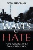 Waves of Hate (eBook, PDF)