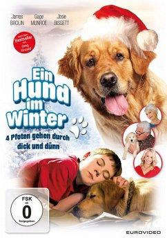Ein Hund im Winter - Brolin,James/Munroe,Gage