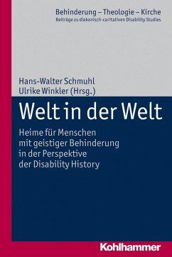 Welt in der Welt (eBook, PDF)