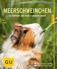 Meerschweinchen (eBook, ePUB) - Birmelin, Immanuel