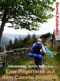Eine Pilgerreise auf dem Camino Primitivo (eBook, ePUB)