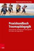 Praxishandbuch Traumapädagogik (eBook, PDF)