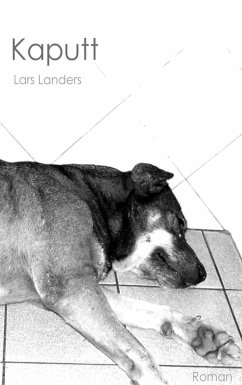 Kaputt (eBook, ePUB) - Landers, Lars