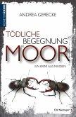 Tödliche Begegnung im Moor (eBook, ePUB)
