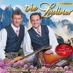 Alpenrosen Aus Den Dolomiten