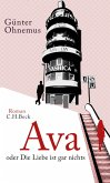 Ava (eBook, ePUB)