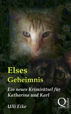 Elses Geheimnis (eBook, ePUB)