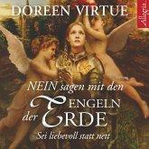NEIN sagen mit den Engeln der Erde (MP3-Download)