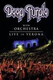 Live In Verona (Dvd)