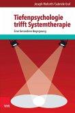 Tiefenpsychologie trifft Systemtherapie (eBook, ePUB)