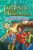 Wirbelsturm über Witterstein / Labyrinth der Geheimnisse Bd.7 (eBook, ePUB)